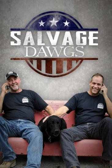 Salvage Dawgs S06E04 Pickle Mansion XviD-AFG