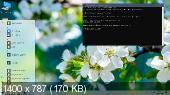 Windows 10 Professional x64 2004 GX v.25.03.20 (RUS/2020)
