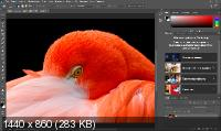 Adobe Photoshop 2020 21.1.1.121 by m0nkrus
