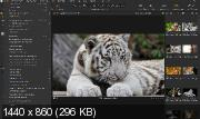Capture One 20 Pro 13.0.4.8 Portable by conservator