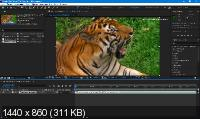Adobe After Effects 2020 17.0.5.16 by m0nkrus