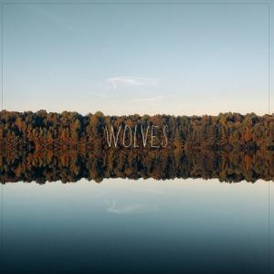 Lights & Motion - Wolves (Single) (2020)