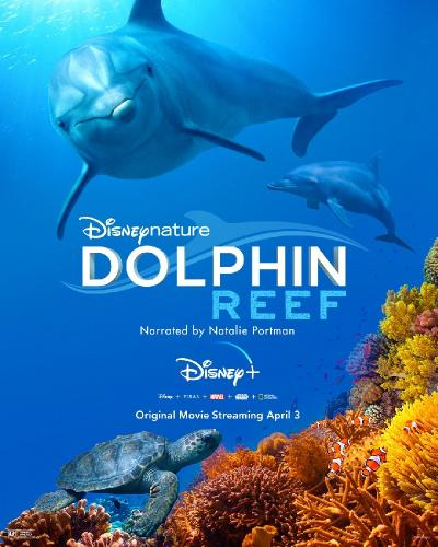 Dolphin Reef (2020) 1080p BluRay [5 1] [YTS]