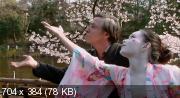 Цвет сакуры / Kirschbluten - Hanami (2008) DVDRip