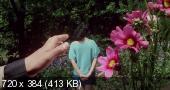 Малышка До-ре-ми ещё вам покажет! / Do-re-mi-fa-musume no chi wa sawagu (1985) WEBRip от liosaa