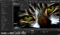 ACDSee Photo Studio Professional 2020 13.0.2 Build 1417 + Rus