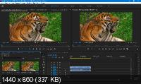 Adobe Premiere Pro 2020 14.1.0.116