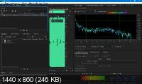 Adobe Audition 2020 13.0.5.36 RePack by KpoJIuK