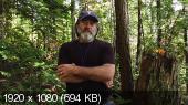 Фантастические Грибы / Fantastic Fungi (2019) WEBRip 1080p