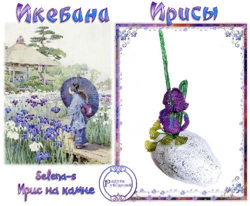 "Проект ""Икебана"" Ирисы. Поздравляем победителей _34ef4709613fa1b722dfe8f9a8633ad5"