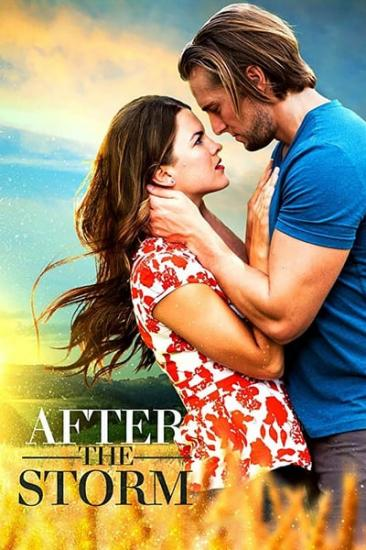After The Storm 2019 720p WEBRip x264 AAC-YTS