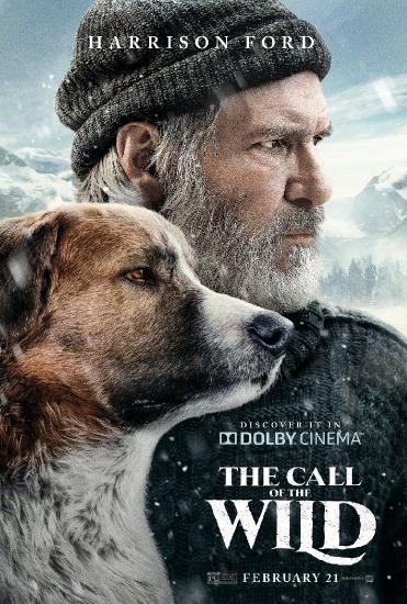 The Call of The Wild 2020 720p BluRay 800MB x264-GalaxyRG