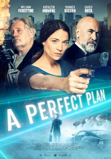 A Perfect Plan (2012) 1080p BluRay -5 1- -YTS-