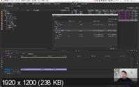 Premiere Productions: Киллер-фича для монтажера (2020/PCRec/Rus)