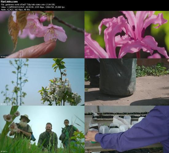 Gardeners World S53E07 720p HDTV x264 dotTV