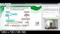 Стресс и надпочечники - Первая Школа Биохакинга (2020/PCRec/Rus)