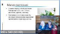 Путь мага: Как исполнять желаемое (2020/CAMRip/Rus)